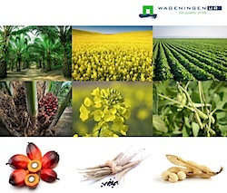 Plantaardige grondstoffen