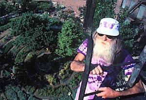 Adam Purple