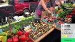 Documentaire: Hoe zit het nu echt met GMO?