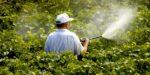 Europees Parlement wil glyfosaat niet verbieden