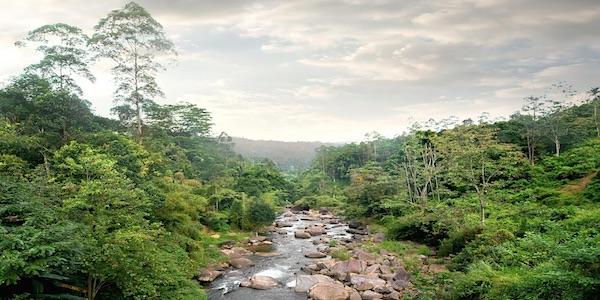 Duurzaam benutten van natuur goed voor economie
