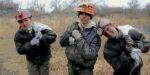 PvdD: overheid verwijderde waarschuwing tegen kinderarbeid Oekraïne