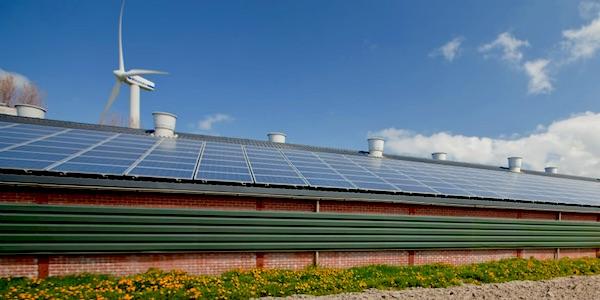 Bijna de helft consumenten wil energie uit de streek