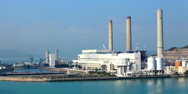 Greenpeace wil naar rechter tegen bijstoken biomassa in kolencentrales