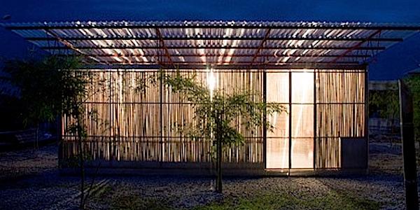 Bamboe is goed voor klimaat, landbouw en werkgelegenheid