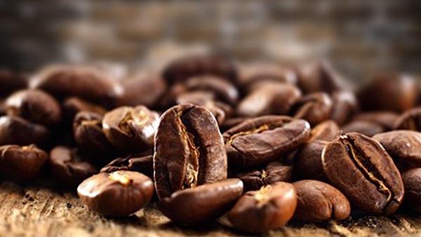 Wilde koffie uit de jungle klimaatbestendig en lekker
