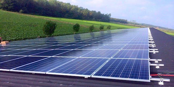 Helft van de vraag naar elektriciteit kan worden opgewekt door zonnepanelen