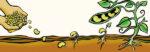 Voedseltop valse start voor duurzame voedselketen