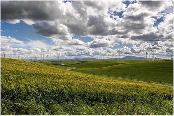 Klimaatslimme landbouw vraagt om grote aanpassingen beleid