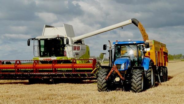 GMO gewassen leveren geen grotere oogsten op, toont onderzoek