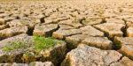 Geweld door klimaatverandering, wat doen we daar aan?