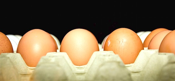 EU wetgeving beschermt consumenten niet tegen voedselschandalen