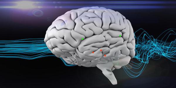 hormoonverstoorders in hersenen