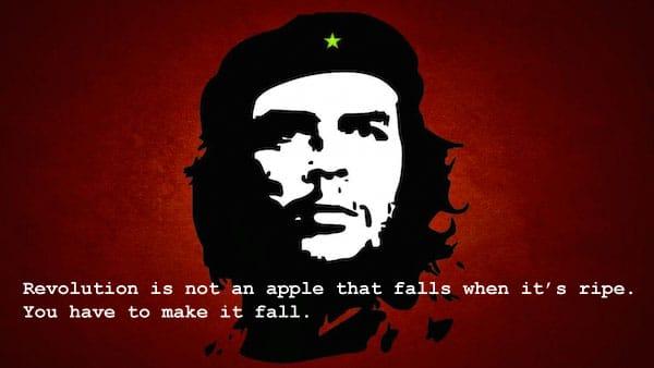 revolutie che