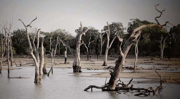 Slaat het klimaat op hol of de wetenschappers?