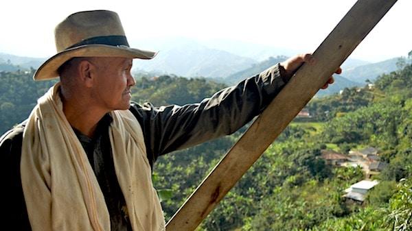 De Rainforest Alliance verbetert duurzame certificering