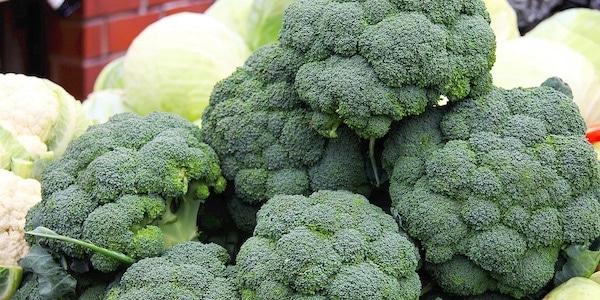 patent op broccoli