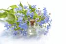 De nieuwe duurzame trend: biologische cosmetica