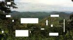 Instorten biodiversiteit groter probleem dan klimaatverandering