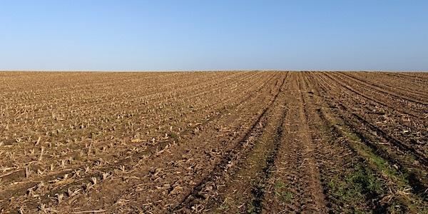 Landbouw krijgt klappen door klimaat