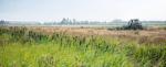 Natuurinclusief boeren is succes in Vechtplassen