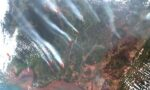 Satellietdata helpen in strijd tegen ontbossing