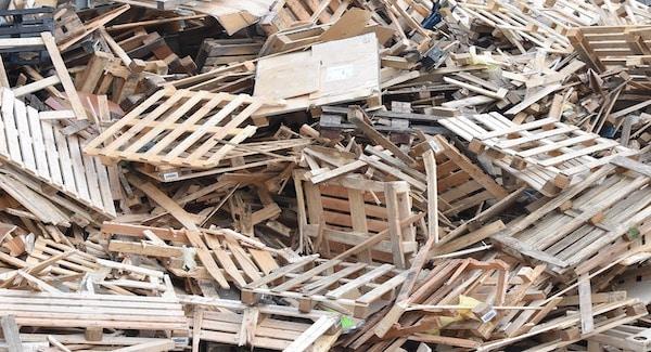 Biomassa studie PBL geeft geen duidelijke uitkomsten