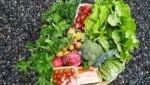 Huishoudens verspillen minder voedsel in 2019