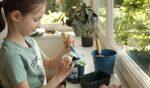 Van zaadje tot slaatje: Kinderen kweken eigen salade