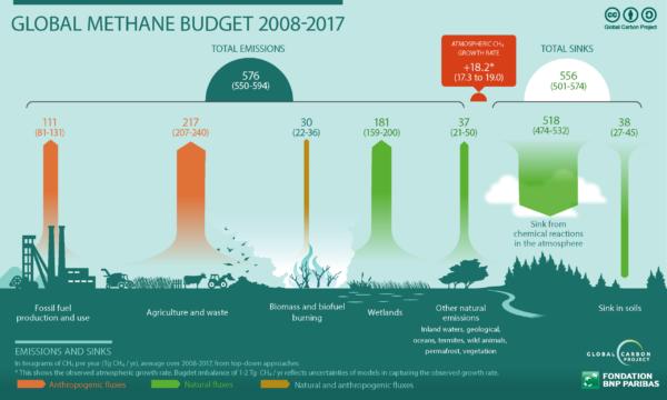 methane budget
