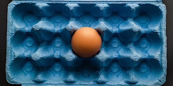eiwittransitie protein
