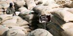 Grote koffiebedrijven nog steeds niet transparant over duurzaamheid