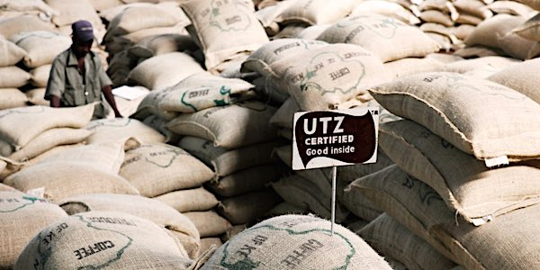 koffiebedrijven - Foto Hans Alting van Geusau