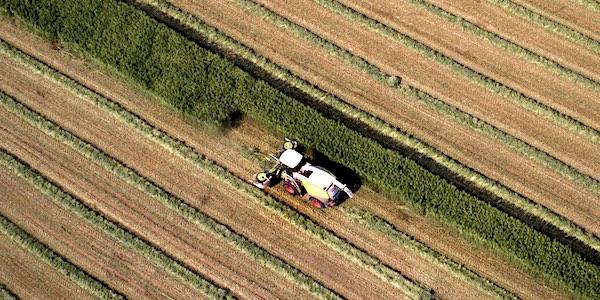 agro industrie