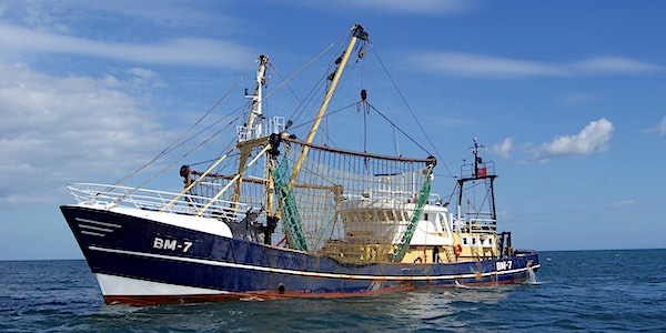 boomkor trawler