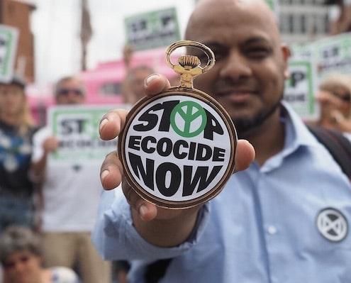 definitie ecocide