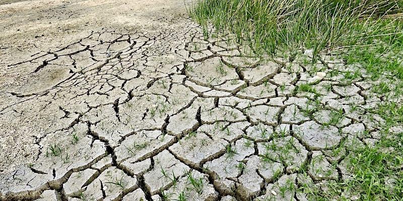 hongersnood en klimaatdoden